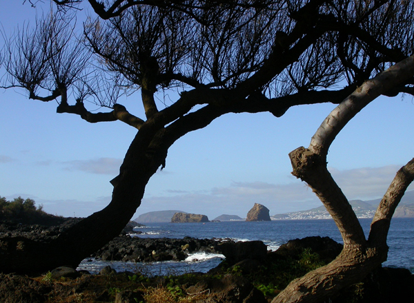 Another Island by Bob Ward. Copyright 2014 by Bob Ward. All rights reserved.